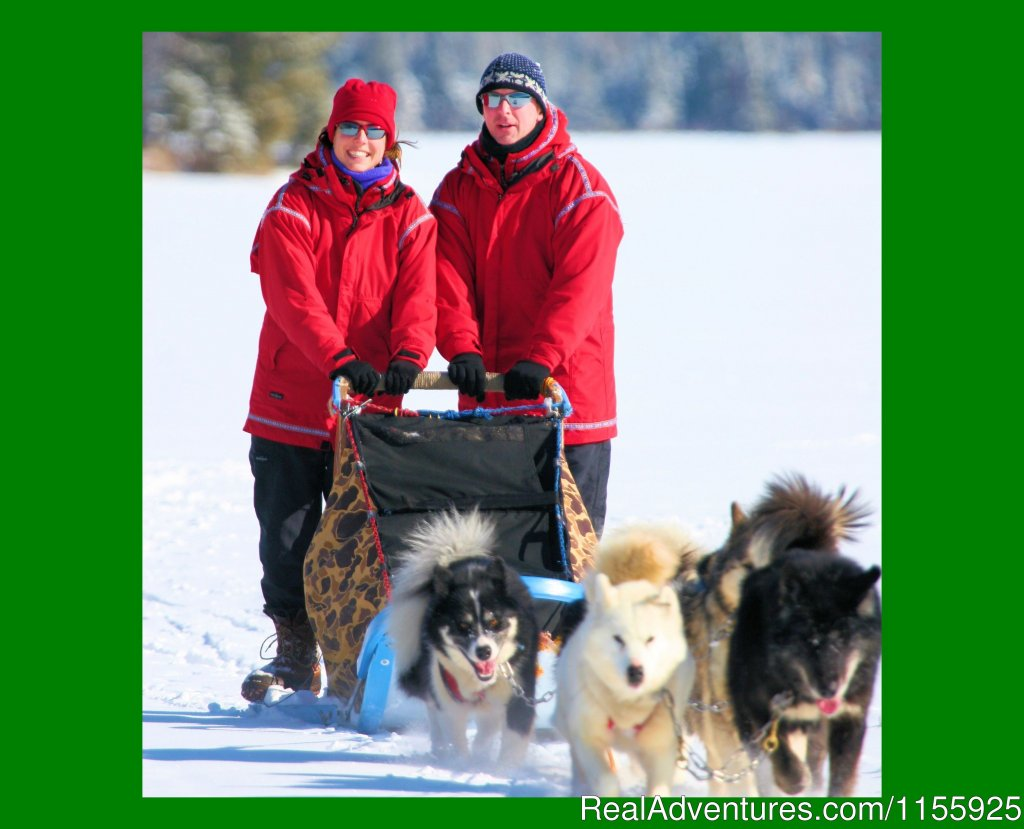 Enjoy a Wintergreen Dogsled Vacation