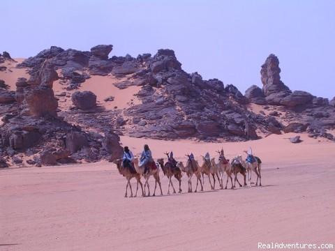 Akakus Desert Team