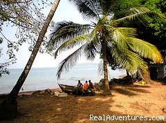- Discovery Getaways & Guesthouses in  West Africa