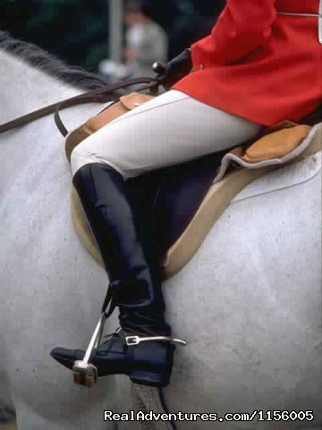 - Gold Stirrup Riding Academy