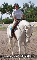 Image #2 of 6 - Gold Stirrup Riding Academy