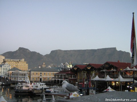 Waterfront, Cape Town - New African Frontiers Tours & Safaris