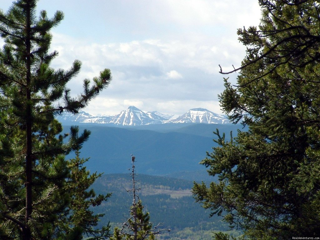 View from Coliseum | Image #8/8 | Cheechako Cabins, your Rocky Mountain Getaway