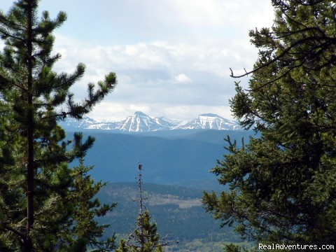 View from Coliseum - Cheechako Cabins, your Rocky Mountain Getaway