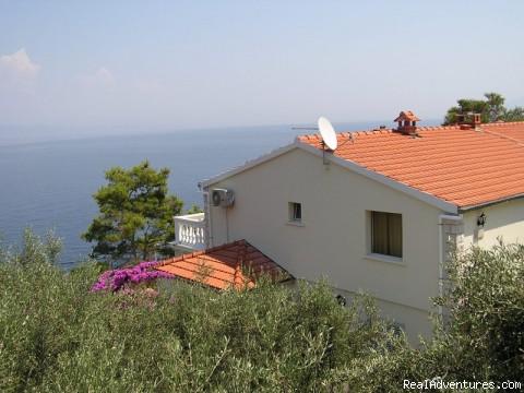 Villa Korkyra apartments - island Korcula