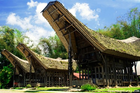 Toraja Exotic Package Tour: Photo #2