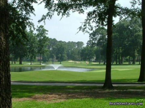 Just steps away... - Lake and Golf Course Home Just North of Houston TX
