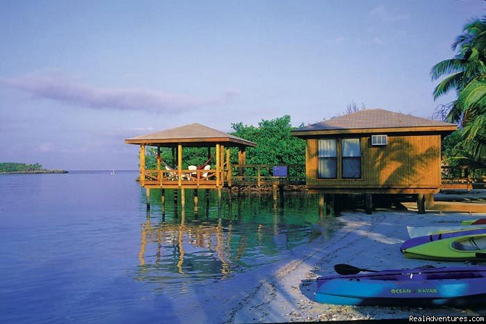 Image #2/15 | Paradise in Roatan - Diving Adventure