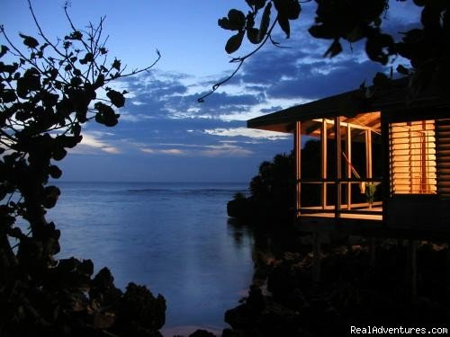 Image #10/15 | Paradise in Roatan - Diving Adventure