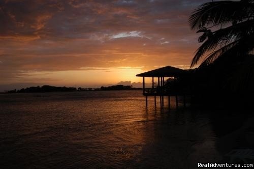 Image #15/15 | Paradise in Roatan - Diving Adventure