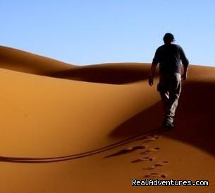 Customized Morocco trips