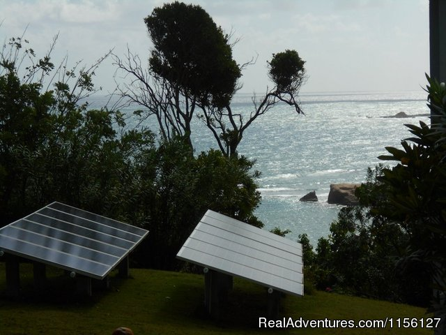 Relax in Nature at Sea Cliff Cottages