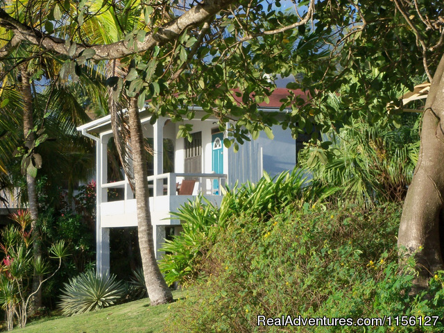 Studio Cottage   1 - Relax in Nature at Sea Cliff Cottages