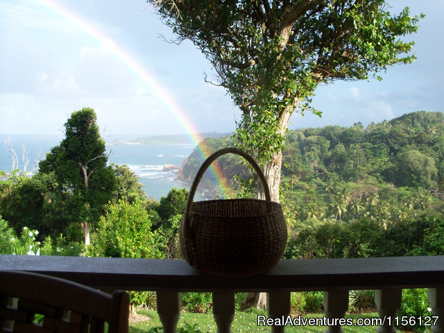 Relax in Nature at Sea Cliff Cottages Rainbows on the balcony
