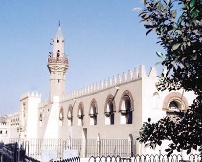 - Egypt Tours