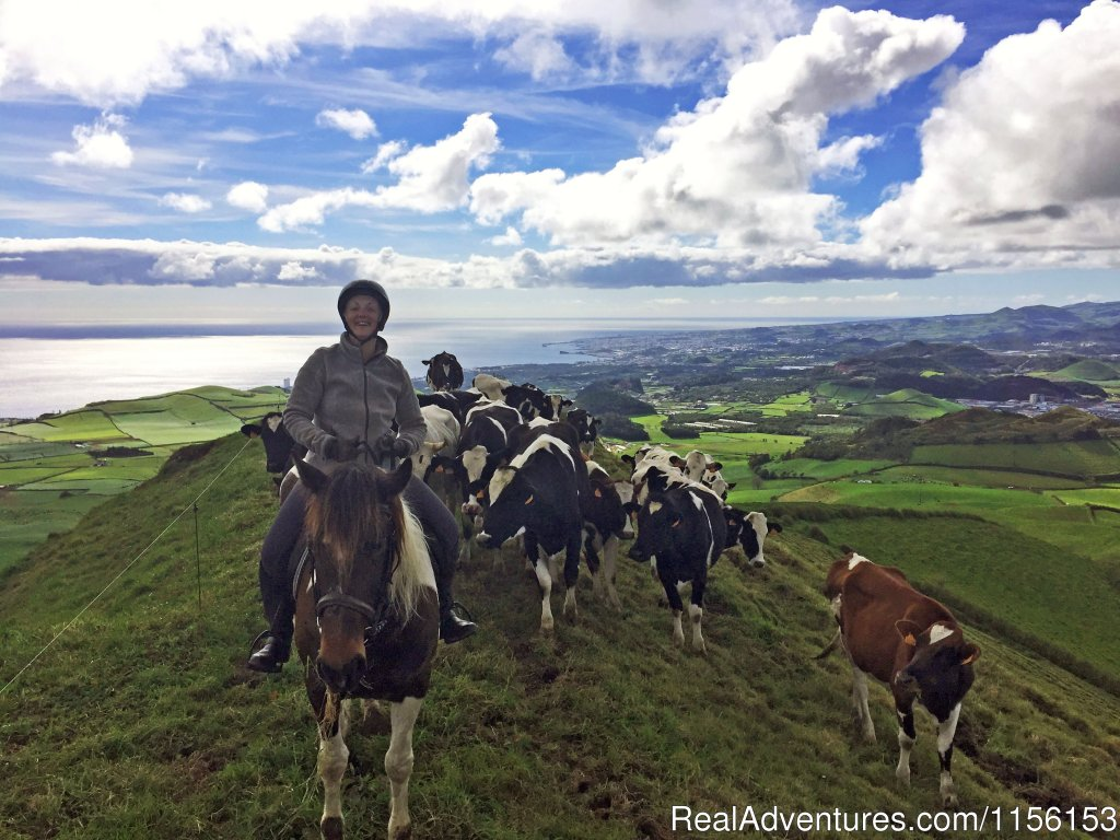 Fun | Image #10/17 | Unforgettable riding weeks at Quinta da Terca