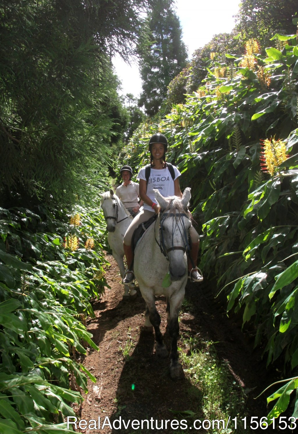 Cabuco trail | Image #7/17 | Unforgettable riding weeks at Quinta da Terca