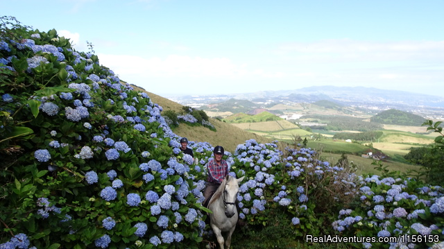 Exciting horse riding vacations at Quinta da Terca Quinta da Terca