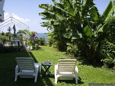 Our Rincon House Backyard | Image #7/14 | Largest Affordable Rentals Rincon Puerto Rico