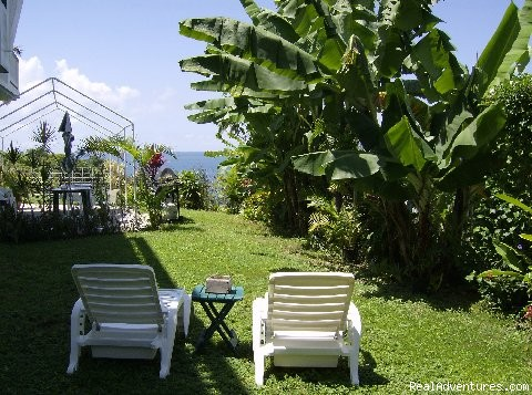 Our Rincon House Backyard - Largest Affordable Rentals Rincon Puerto Rico