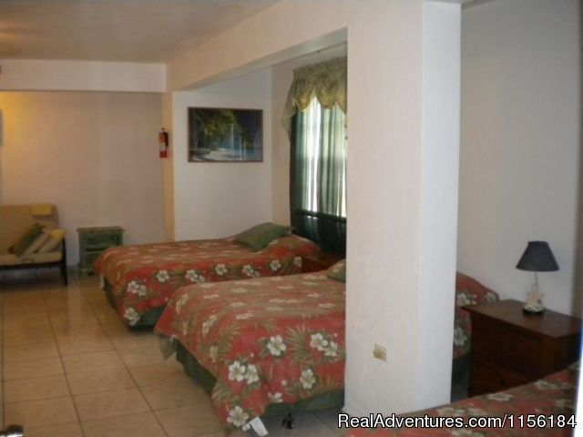 Image #2 of 19 - Largest Affordable Rentals Rincon Puerto Rico