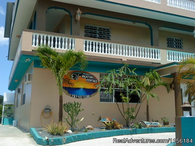 Largest Affordable Rentals Rincon Puerto Rico