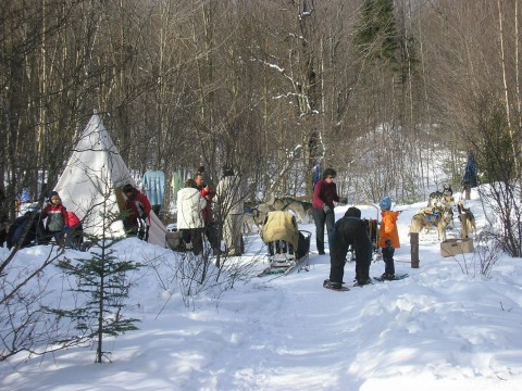 Dogsled Tour Site - Vermont Dogsledding and Guided Tours
