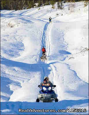 Snowmobile and Dog Team - Dog Sledding  100 Mile House, Cariboo