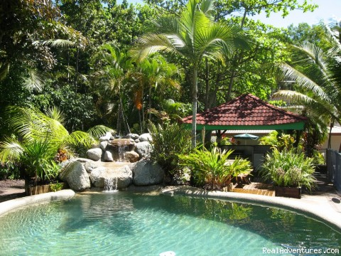 Image #3 of 6 - Lychee Tree Holiday Apartments, Port Douglas