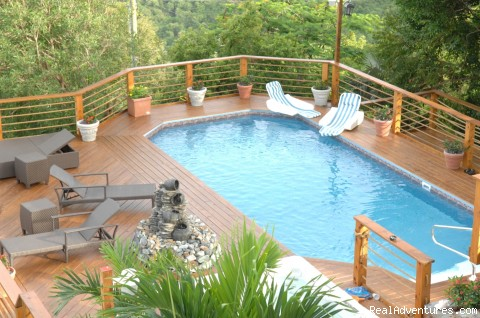 Pool - Villa St. Thomas