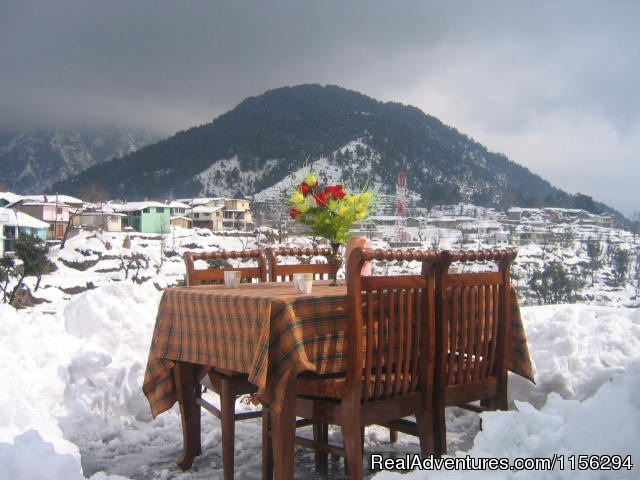 Rooftop Resturant - Hotel Snow Crest Inn Dharamsala