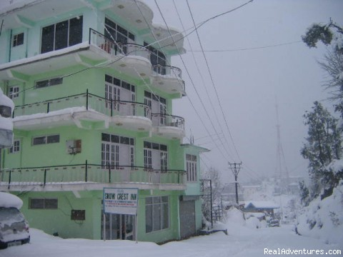 Snow Crest Inn Dharamsala in Winter - Hotel Snow Crest Inn Dharamsala