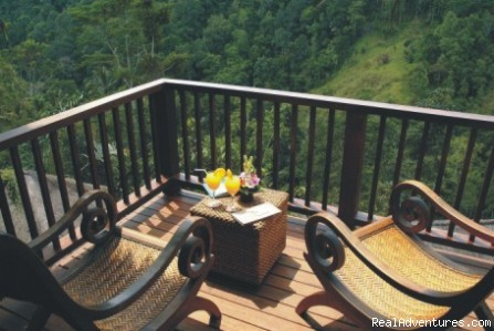 - Nandini Bali Jungle Resort and Spa