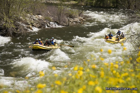 O.A.R.S. Merced River Rafting - O.A.R.S. American River Rafting
