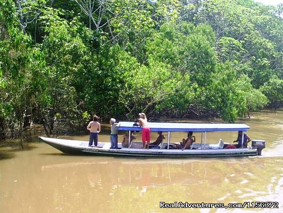 motor boat. (#10 of 11) - Brazil Manaus Amazon Jungle Tours
