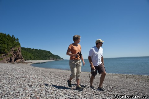 Melvin Beach stroll - Fundy Trail