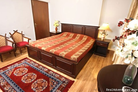 Superior Bedroom - Magical Delhi Bed and Breakfast