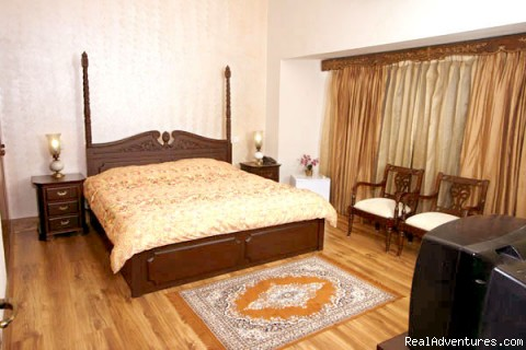 The Best room in the house - Magical Delhi Bed and Breakfast