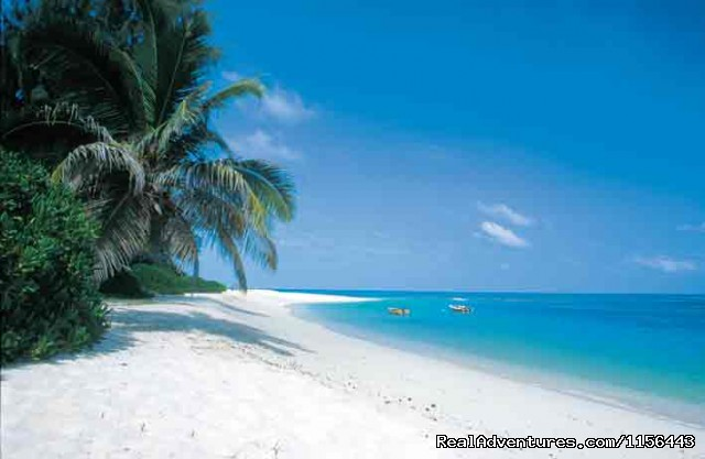 Zanzibar Beach Holiday & Mikumi National Park