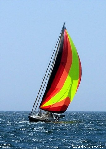 A downwind run to Penobscot Bay - Twilight Charters, Maine and Bahamas Sail Charters