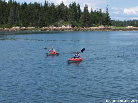 Enjoying a quiet Anchorage - Seal Bay - Twilight Charters, Maine and Bahamas Sail Charters