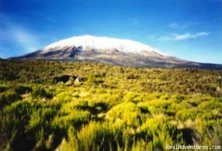 Ultimate Kilimanjaro - Climb Mount Kilimanjaro with Ultimate Kilimanjaro(