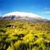 Ultimate Kilimanjaro