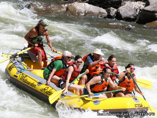 Rafting the Colorado River - Whitewater Rafting, LLC