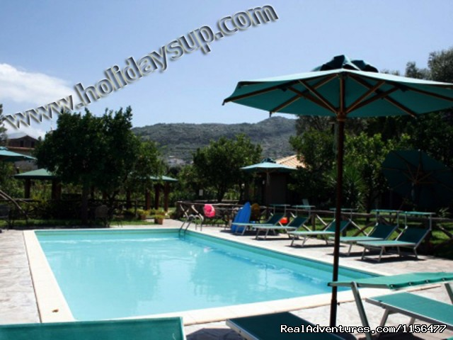Swimming pool - Charming apartment with swimming pool in Sorrento