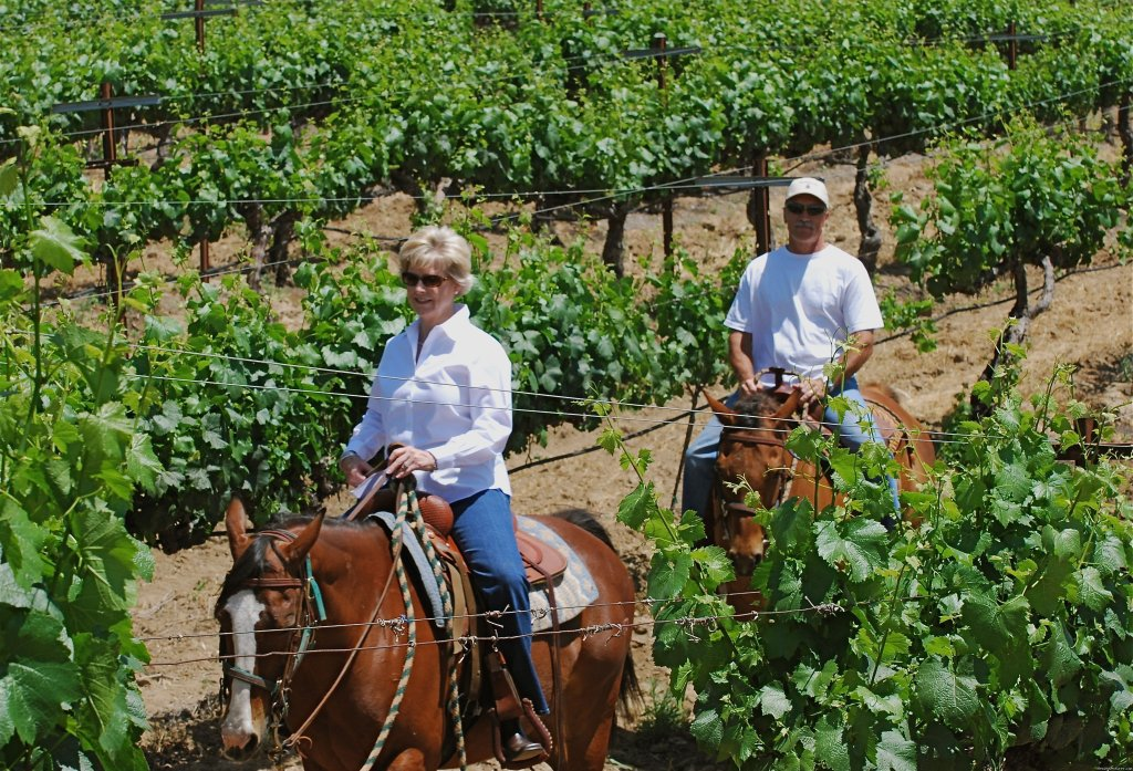 Birthdays  | Image #4/8 | Wine Country Horseback Riding in Temecula CA