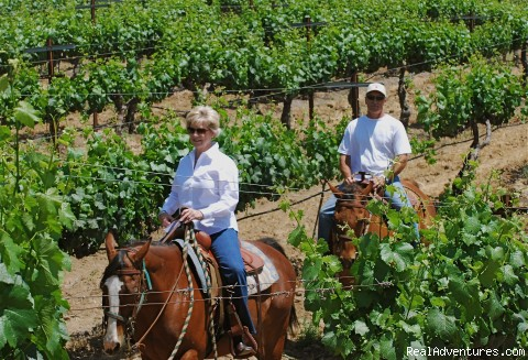 Birthdays  - Wine Country Horseback Riding in Temecula CA