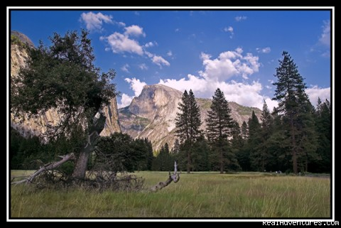 Yosemite Outdoor Adventures: Our classroom
