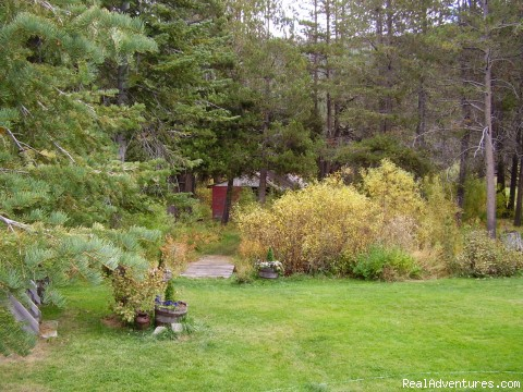 LANSCAPED LARGE BACK YARD WITH TRAILS (#3 of 13) - Luxury South Lake Tahoe Rental & Boat Charter