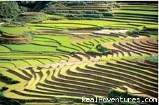 Sapa photo attraction - Daily Departure Tours Starting from Hanoi
